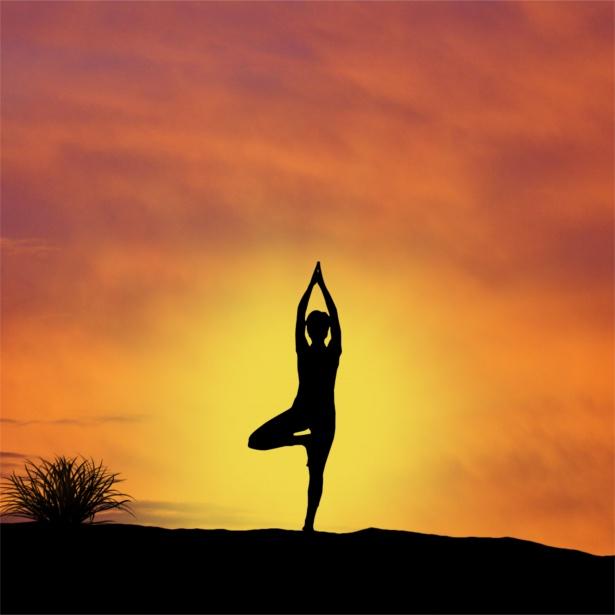 Le club Yoga